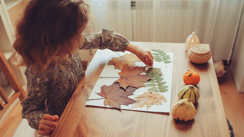 มือที่กำลังวงดอกไม้แห้งสีน้ำตาลและสีเขียวบนกระดาษซึงอยู่บนโต๊ะสีน้ำตาลกับเปลือกผลไม้ต่างๆ